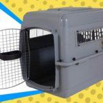 Best Plastic Dog Crates