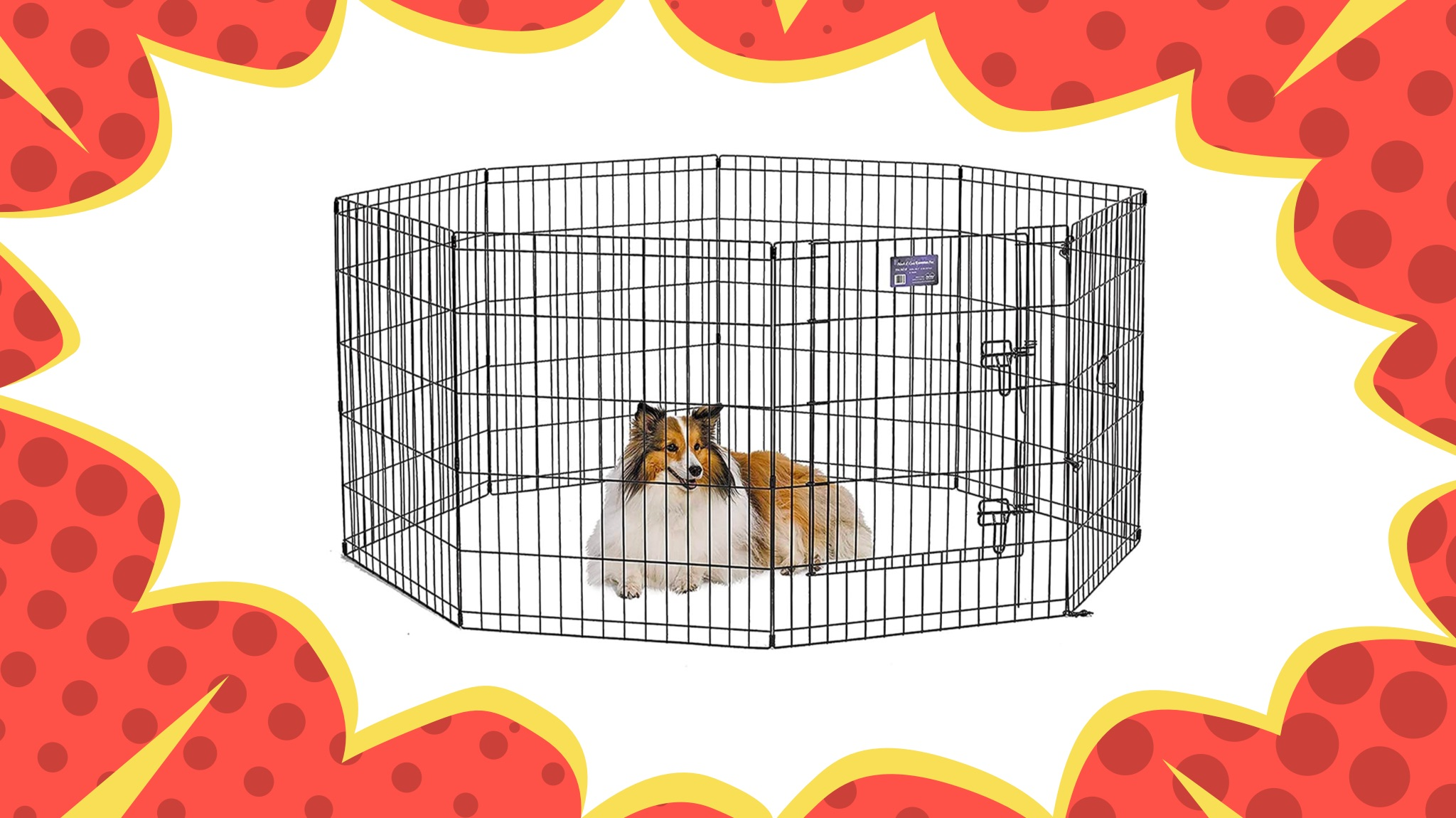 Best Dog Playpens