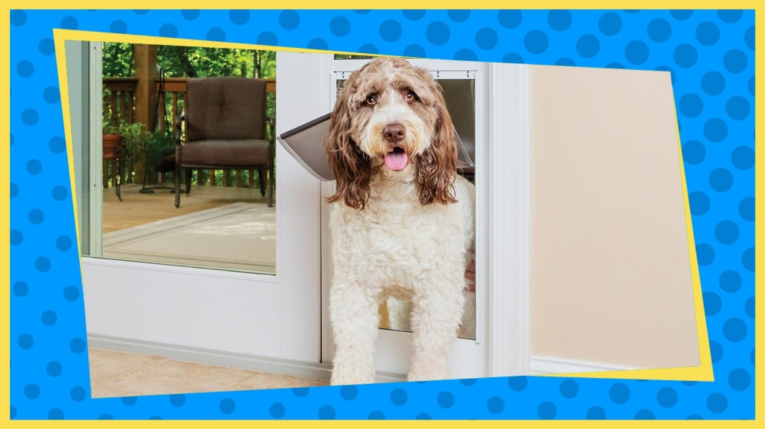 A dog going through the best dog door.