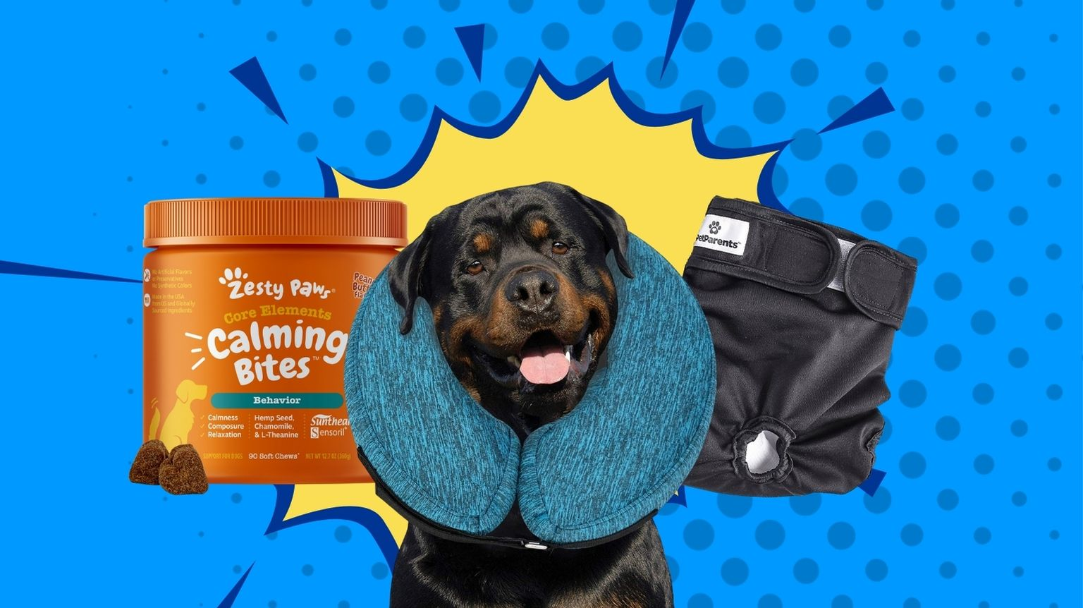 From probiotics to cones, these are the best dog heath products.