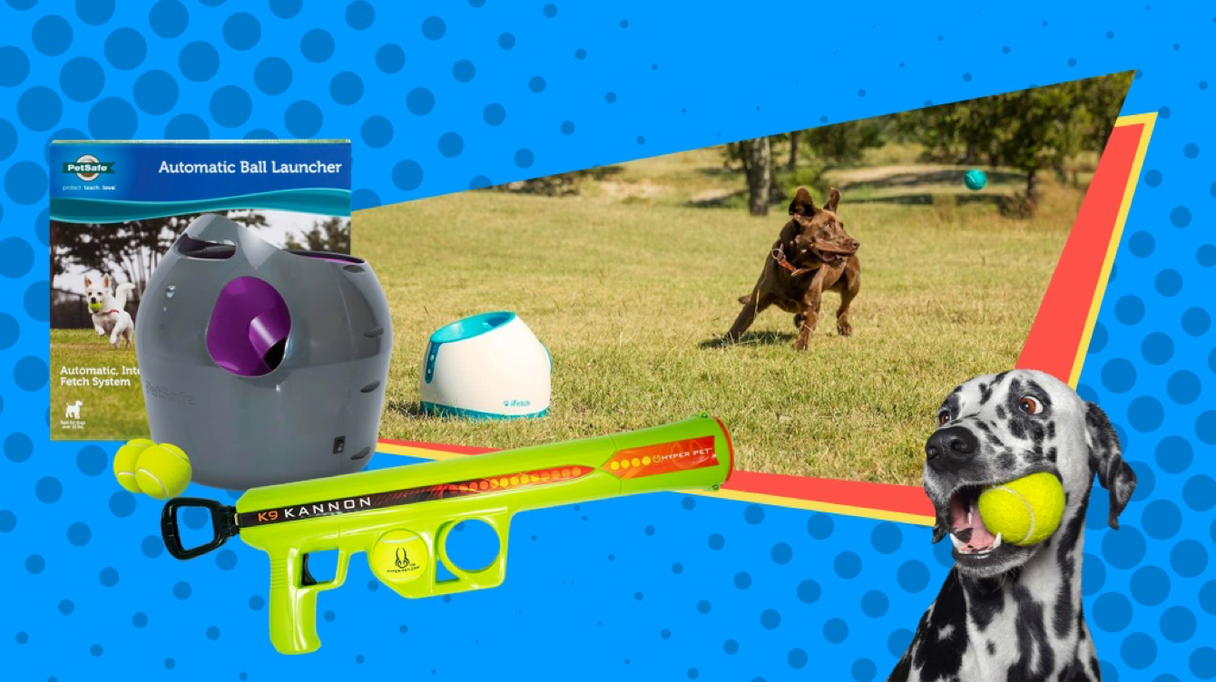 Best Automatic Dog Ball Launchers