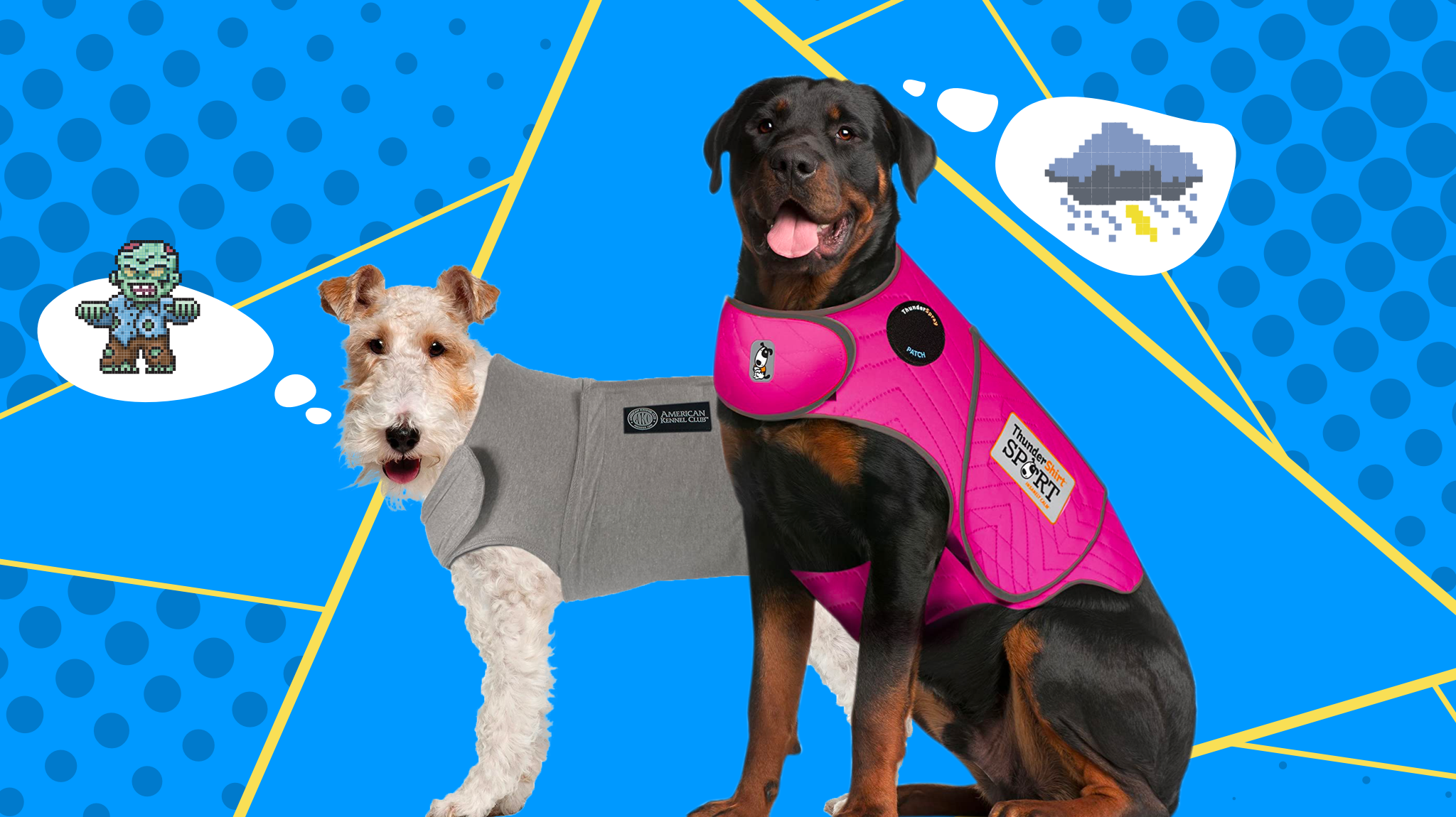 Best Dog Anxiety Jackets