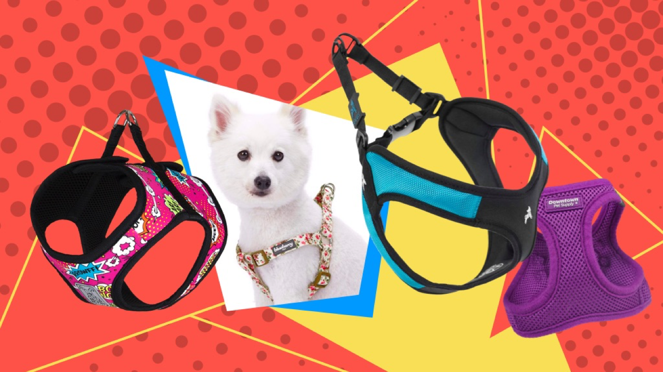 Best Step-in Dog Harnesses