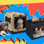Best Portable Dog Crates