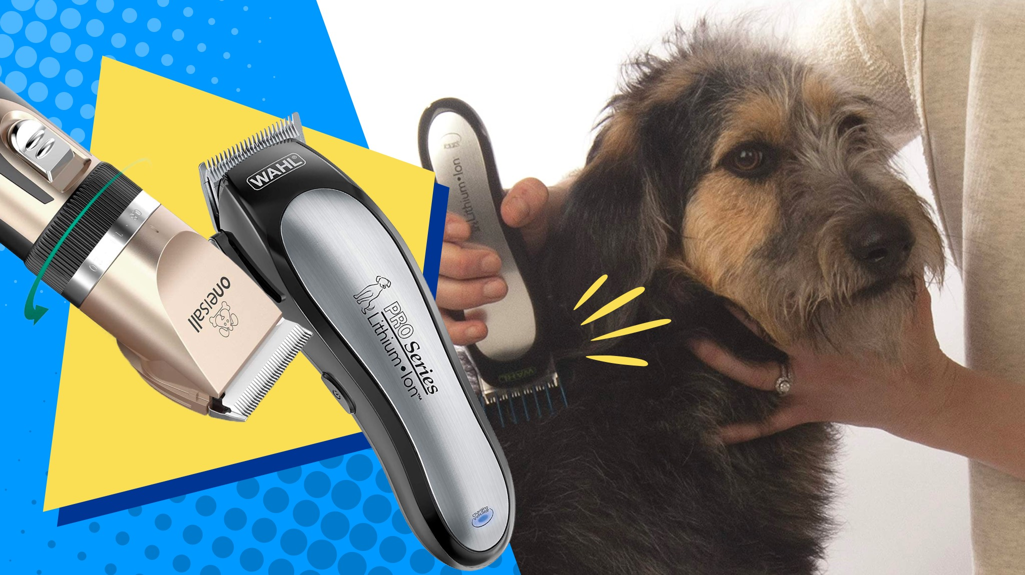 dog clippers grooming an older, shaggy dog.