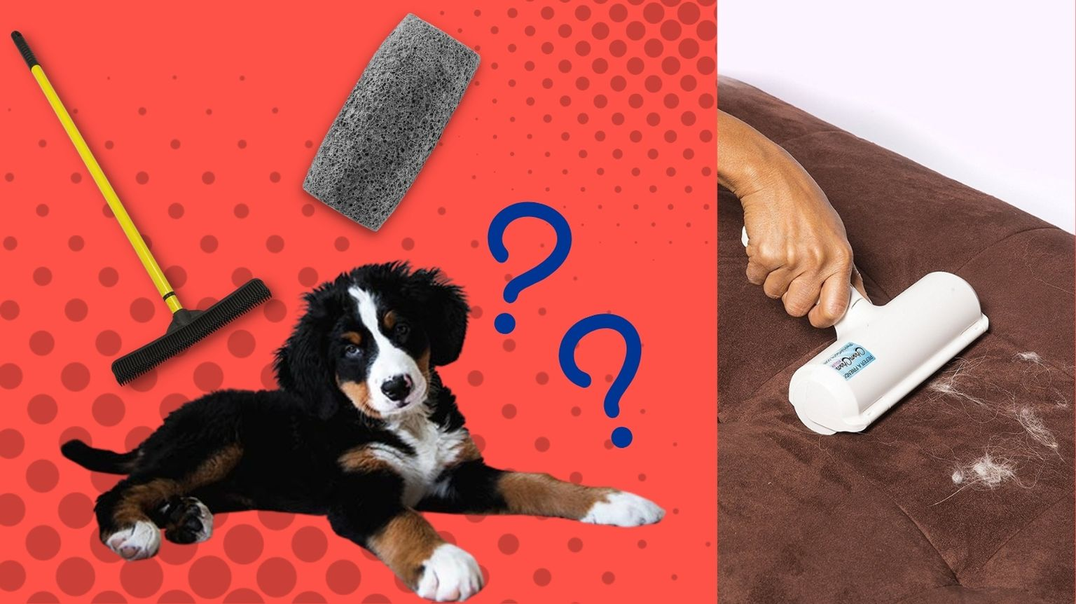 Newfoundland next to pet hair removers