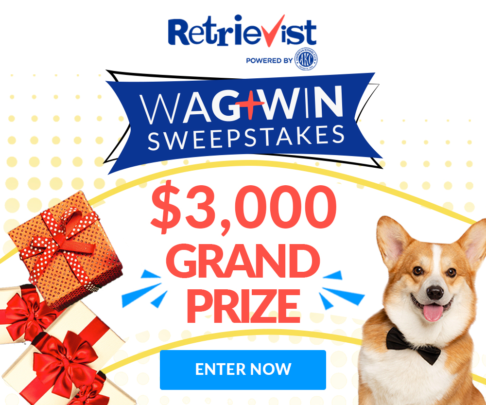 Retrievist Giveaway Sweepstakes